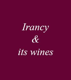 Irancy & its wines